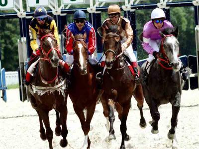 Horse Racing 4