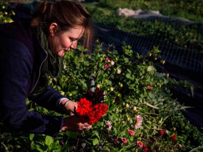 Iona Flower course