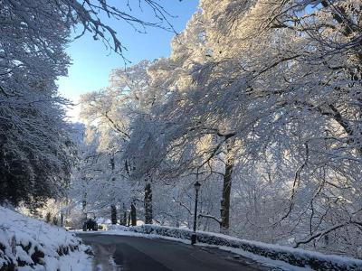 Snow on driveway