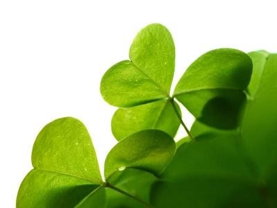 St. Patrick's Day 3