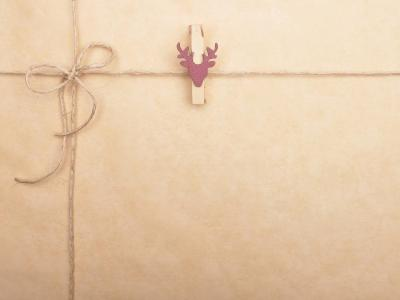 Voucher Envelope with peg