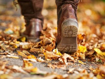 walking break, leaves, autumn