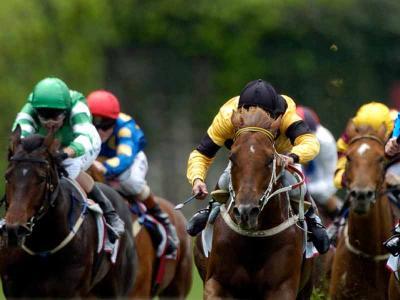 Horse Race 3
