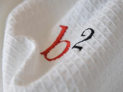 b2 dressing gown